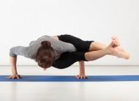 Arm Balances Yoga Poses Pose Directory Yogaclassplan Com
